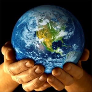 Sustainability blog 1