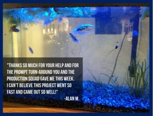 aquarium fish tank led lighting