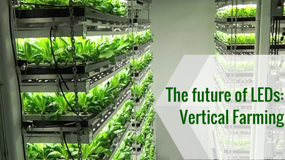 vertical farming with LEDs