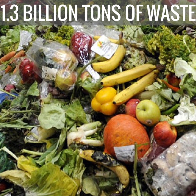 Fighting against Food Losses and Waste: An EU Agenda